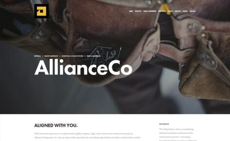 ALLIANCE CO